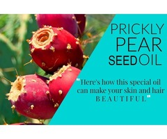 organic prickley pear seed oil