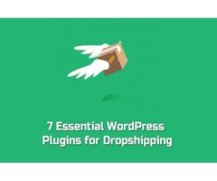 Wordpress Plugins for Dropshipping