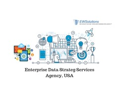 Enterprise Data Strategy Services Agency, USA