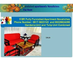 5 BR Furnished Apartment in Novaliches, Quezon City Philippines