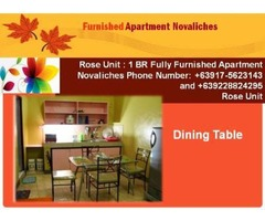1 br fully furnished apartment in novaliches quezon city