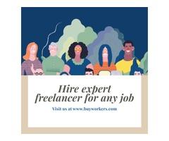 Hire expert freelance writers