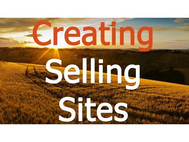 Website development and SEO promotion - Alex Panin | free-classifieds-usa.com