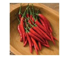 Thailand Chili Produce | free-classifieds-usa.com