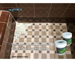 Sentura Epoxy Shower Caulk Remover and Grout Sealer