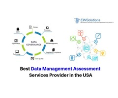 Best Data Management Assessment Services Provider in the USA
