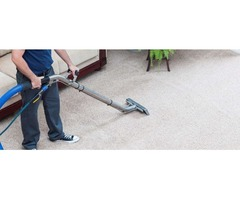 Do You Want Carpet Cleaning?