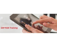 Boost your career with SAP PLM comprehensive training   free-classifieds-usa.com