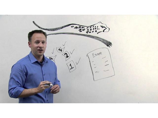 Project Management Professional Exam | free-classifieds-usa.com