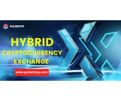 Hybrid Cryptocurrency Exchange Development - Pulsehyip
