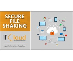 Secure File Sharing & Cloud Data Storage