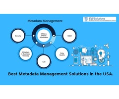 Best Metadata Management Solutions in the USA?