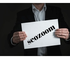 SEOZomm Digital Marketing