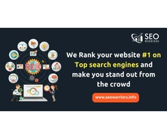 Professional SEO Services | SEOWarriors