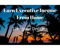 EARN EXECUTIVE INCOME FROM HOME