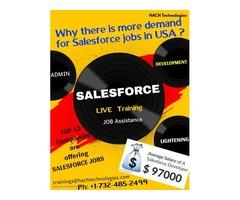 salesforce online training in usa
