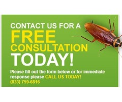 Pest Control Technicians Inc. is qualified to solve your problem