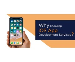 Why Choose iOS Application Development Services USA