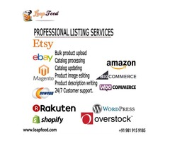 Amazon Product Listing and Upload Services