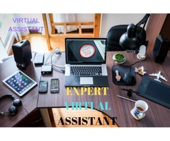 I will be your a virtual assistant for data entry and web research