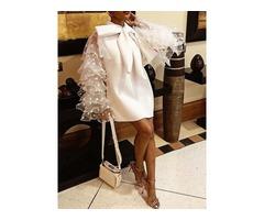 Long Sleeve Above Knee Mesh Ruffle Sleeve Womens A-Line Dress