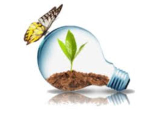 Minnesota Effective Energy Auditing   free-classifieds-usa.com
