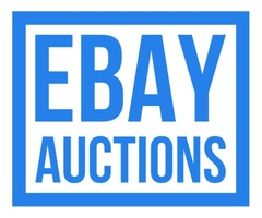 .COM Domain Name Auctions @eBay - $6 to start NO RESERVE