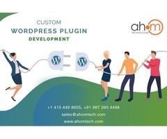 Get WordPress plugin development to make your WordPress website more functional