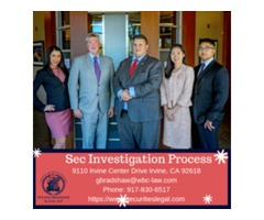 Sec Investigation Process