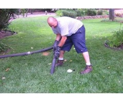 Septic Tank Treatment