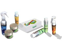 Tile Floor Cleaning Products at Wholesale Price | pFOkUS