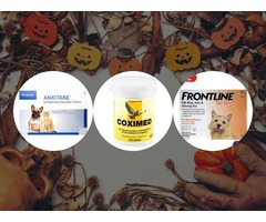 Halloween Budget Pet World Coupons: Shop and Save