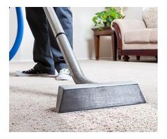 Best Carpet Cleaning In Hamilton NJ
