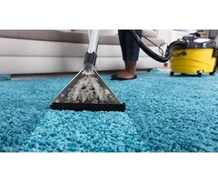 Avail the Carpet Repair and Cleaning Service