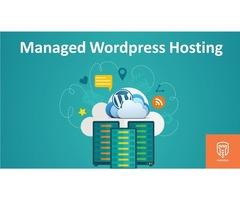 Managed WordPress Hosting | Parsidio LLC