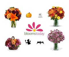 Halloween Blooms Today Coupon: For Low Priced Flowers