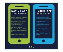 Respond Native Vs Native App Development