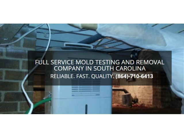 Mold Removal, Easley SC – Array of Solutions | free-classifieds-usa.com