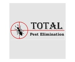 Remove pests and stay away from deadly diseases