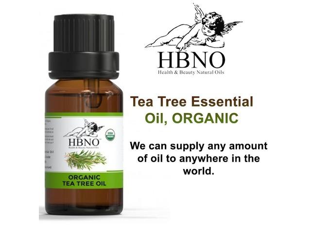 Buy Now! 100% Organic Tea Tree Essential Oil In Bulk | free-classifieds-usa.com