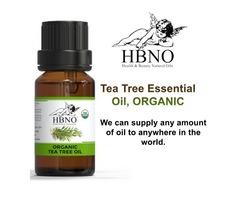 Buy Now! 100% Organic Tea Tree Essential Oil In Bulk