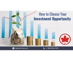 Investor Business Plan and Financial Projections Business Plan