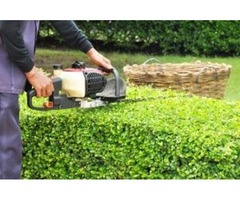 Top Lawn Care Services in Sanford FL