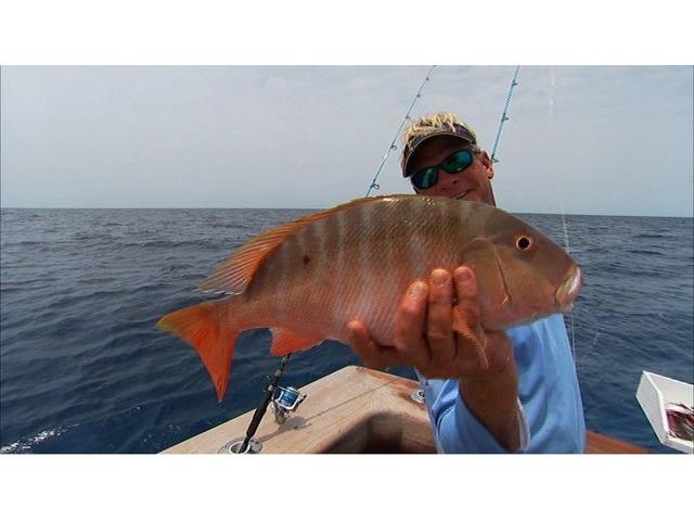 Fishing Turks and Caicos   free-classifieds-usa.com