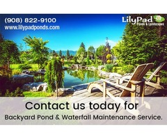 Choose a Home Improvement Company