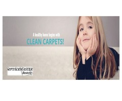 Top Listed Carpet Cleaning Company – servicemaster24/7