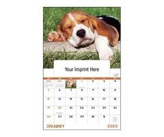 Dog & Cat Calendars