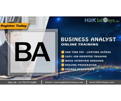 Business Analyst Training in Georgia