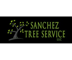 Sanchez Tree Service, LLC