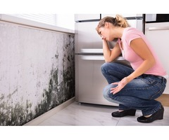 Affordable Mold Remediation Removal Company - ServiceMaster 24/7